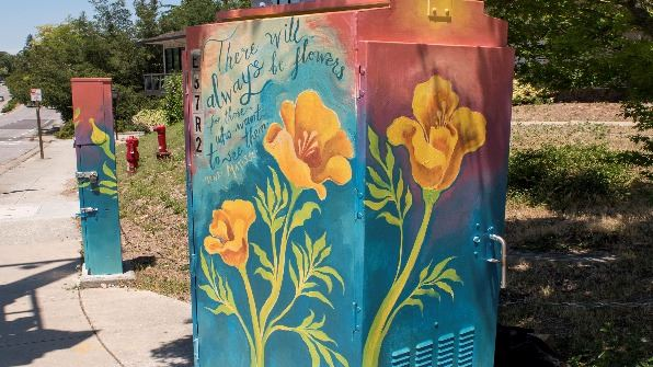 Poppies Painted on Utility Box